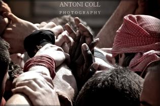 antoni-20110410-2590