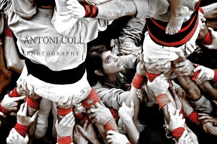 Toni-20111101-16804