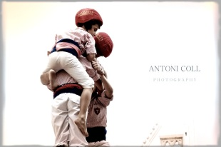 Toni-20120819-31581