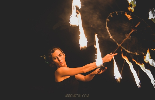 www.antonicoll.com